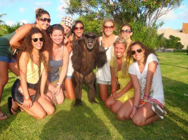 This monkey knows how to PARTY